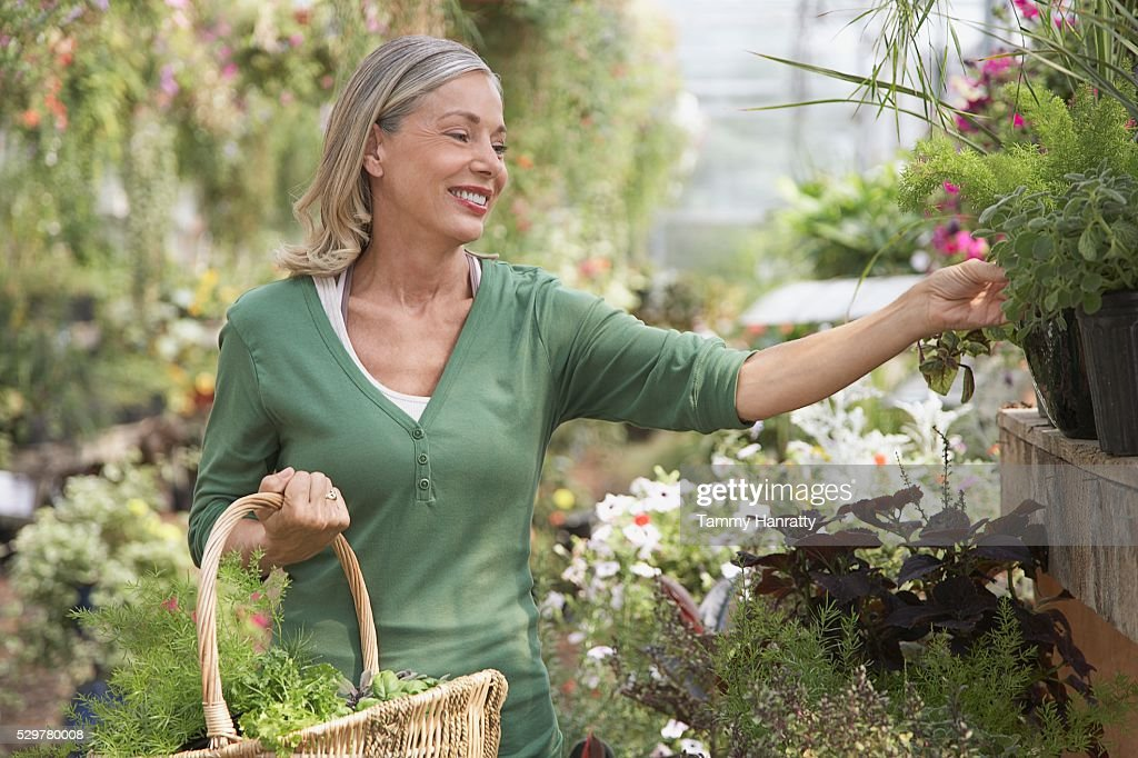 Woman shopping at garden center : Foto de stock