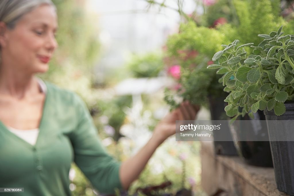 Woman shopping at garden center : Stock-Foto