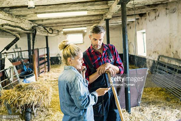 Woman showing phone to male worker amidst hay at barn
