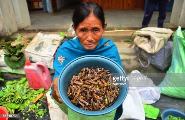 A woman shows dry Grasshopper for sale at a market in Dimapur India north eastern state of Nagaland on Wednesday 22 November 2017