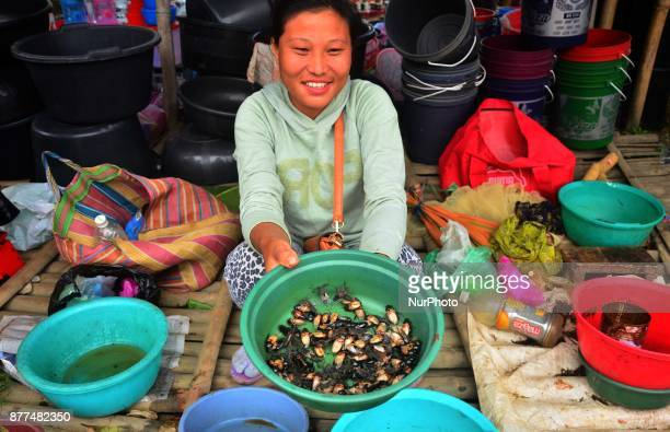 A woman shows fresh water insect for sale at a market in Dimapur India north eastern state of Nagaland on Wednesday 22 November 2017