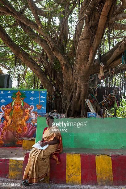 Woman sitting by a holy tree and a Hindu shrine dedicated to the goddess Lakshmi in Tirumala Andhra Pradesh India