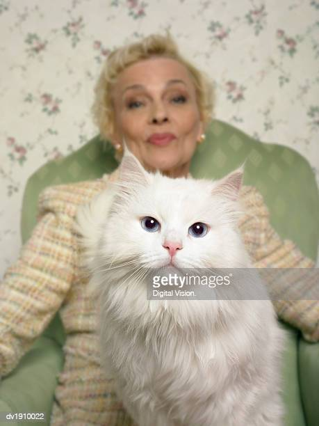 Woman Sitting in an Armchair With a White Persian Cat on Her lap