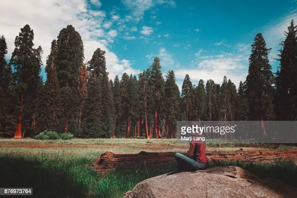 Woman sitting on a rock in the middle of a meadow in Sequoia National Park California USA