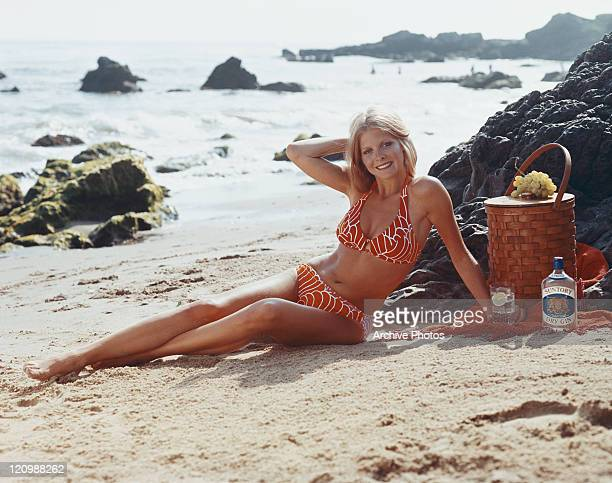 Woman sitting on beach with hamper beside, smiling, portrait