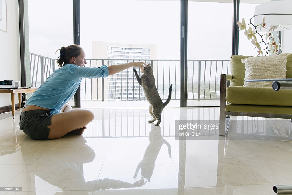 Woman sitting on floor plying with cat, side view : ストックフォト