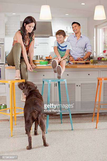 Woman sitting on kitchen counter feeding dog