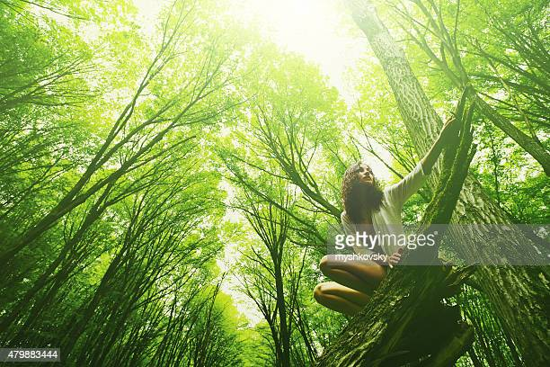 Woman sitting on log in beech forest
