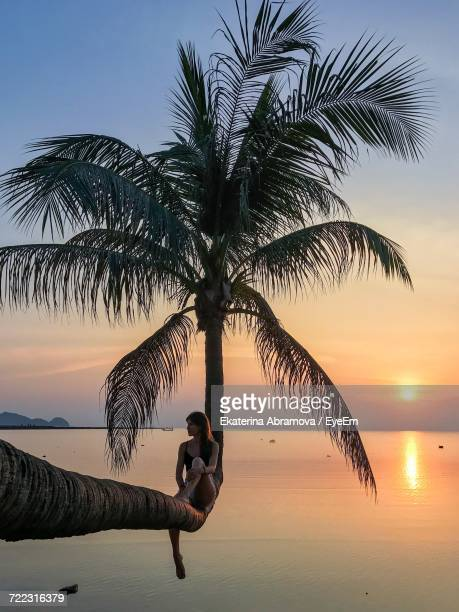 Woman Sitting On Palm Tree By Sea During Sunset