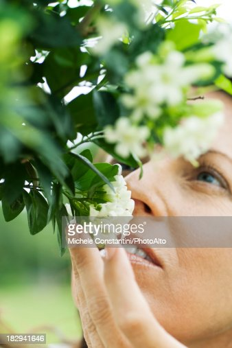 Woman Smelling Jasmine Blossoms Stock Photo Getty Images
