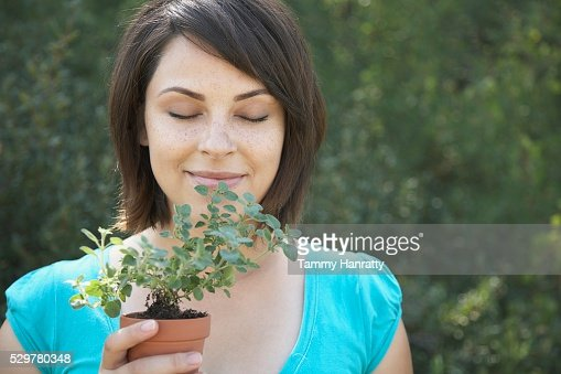Woman smelling oregano plant : Stock-Foto