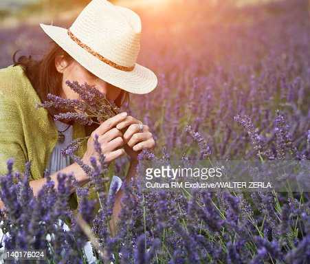 Woman smelling purple flowers in field : Stockfoto