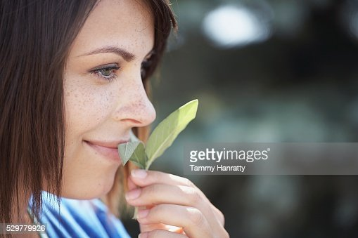 Woman smelling sage leaves : Stock-Foto