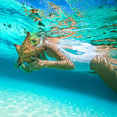 woman snorkeling with an alive starfish in the Caribbean