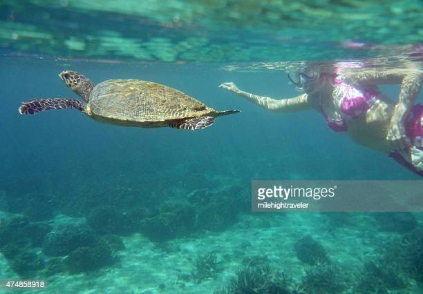 Woman snorkels with green sea turtle Nosy Tanikely Island Madagascar