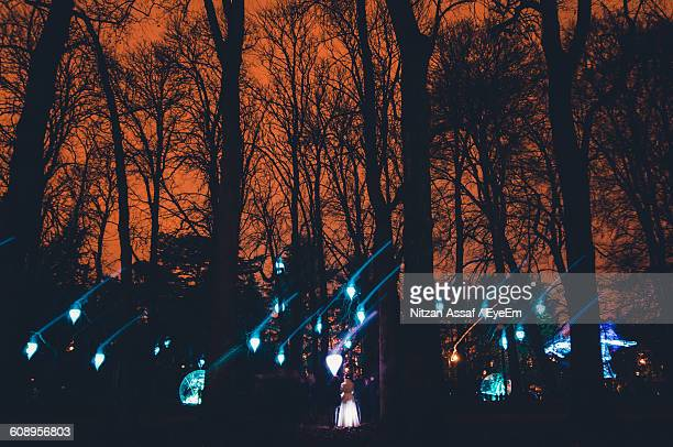 Woman Standing Amidst Illuminated Trees In Forest At Night