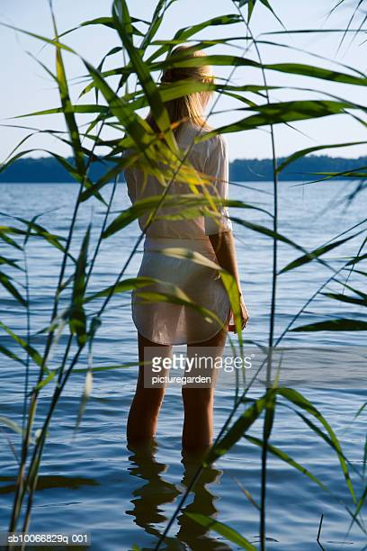 Woman standing ankle deep in lake, rear view through reed