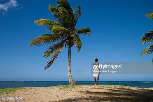 Woman standing by palm tree, facing tropical sea, rear view