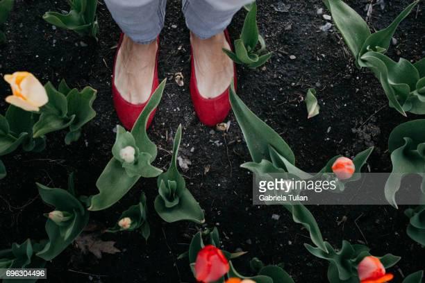 Woman standing in a tulips garden