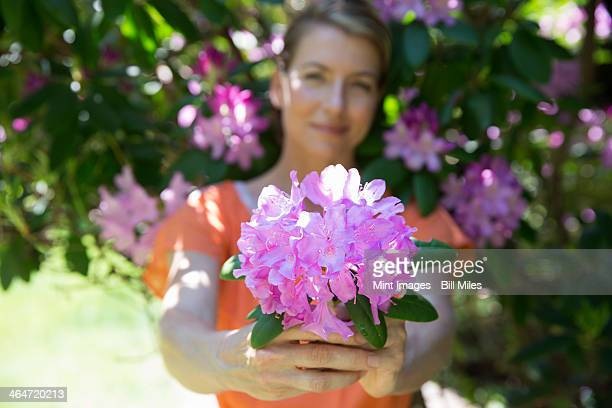 A woman standing in front of a flowering shrub, holding out a large purple rhododendron bloom.