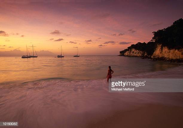 Woman standing in surf, rear view, sunset, Guadeloupe, Caribbean