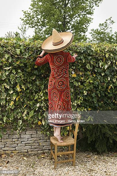 A woman standing on a chair, looking over the garden wall.