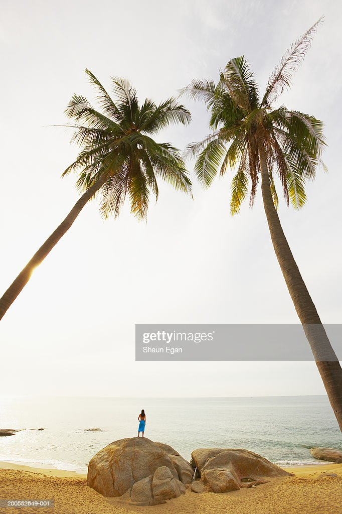 Woman standing on rock, rear view : Stock Photo