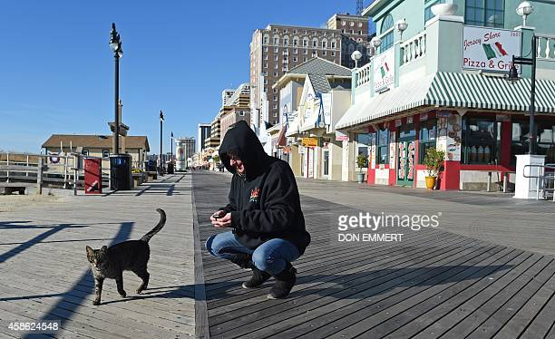 A woman stops to greeet a cat on the boardwalk November 8 2014 in Atlantic City New Jersey AFP PHOTO/Don Emmert