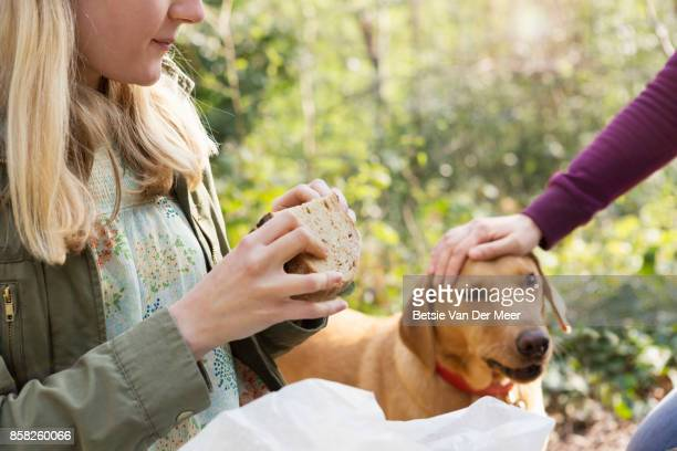 Woman strokes dog while having a picnic.