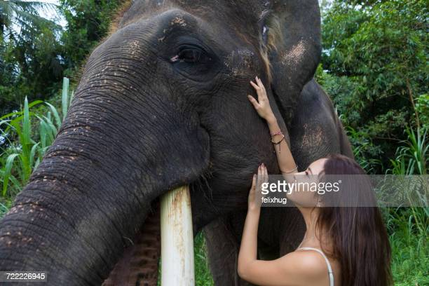Woman stroking elephant, Tegallalang, Bali, Indonesia