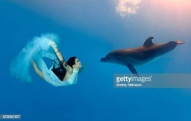 Woman swimming, diving with Bottlenose Dolphin -Tursiops truncatus-