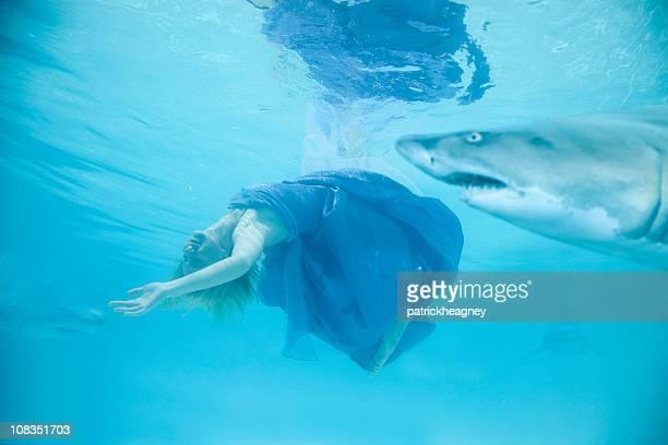 Frau mit Haien schwimmen