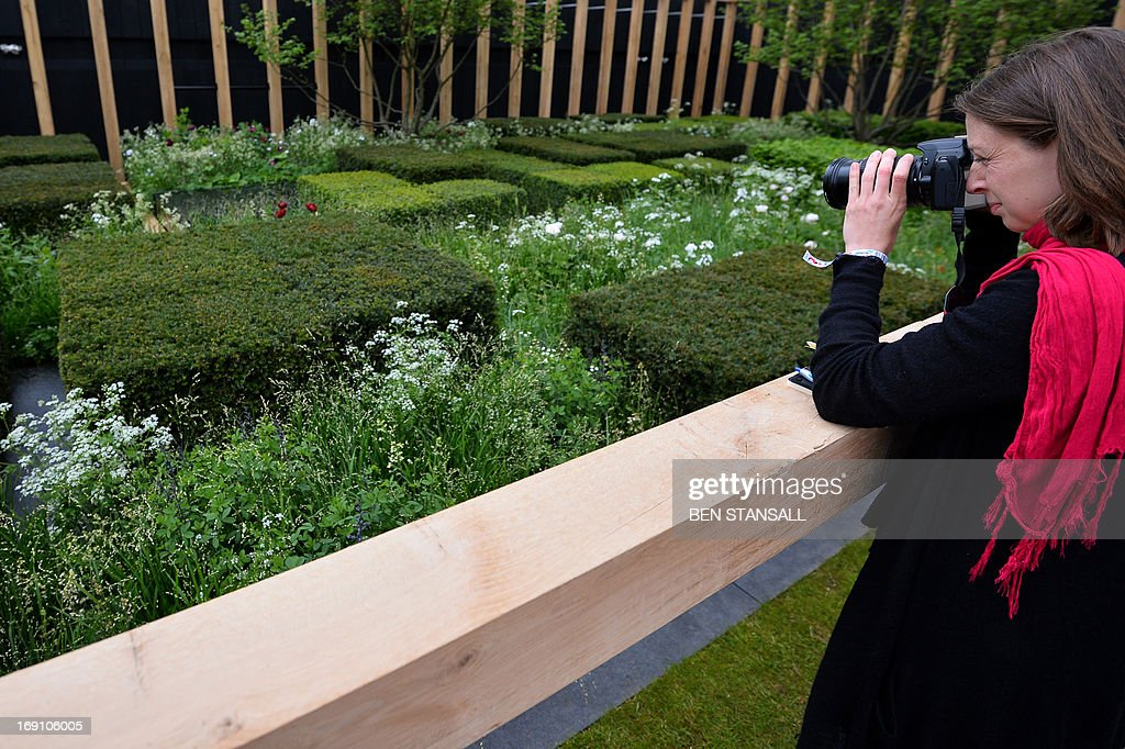 A woman take a picture of the 'Telegraph' garden during the Chelsea Flower Show press day in London on May 20, 2013. The world-famous gardening event run by the Royal Horticultural Society (RHS) is celebrating its centenary year.