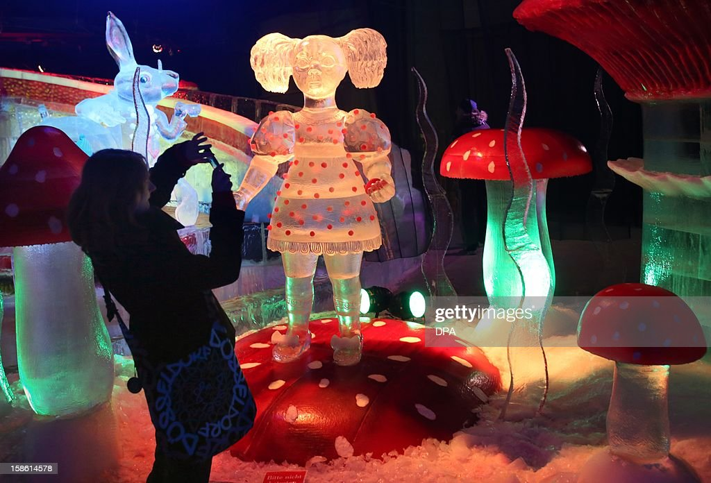A woman takes a picture of a 'Alice's Adventures in Wonderland' scenery built of ice at an adventure farm in Roevershagen, northern Germany, on December 21, 2012. The ice sculptures partly made of red ice are on exhibition until March 3, 2013.AFP PHOTO / BERND WUSTNECK GERMANY OUT