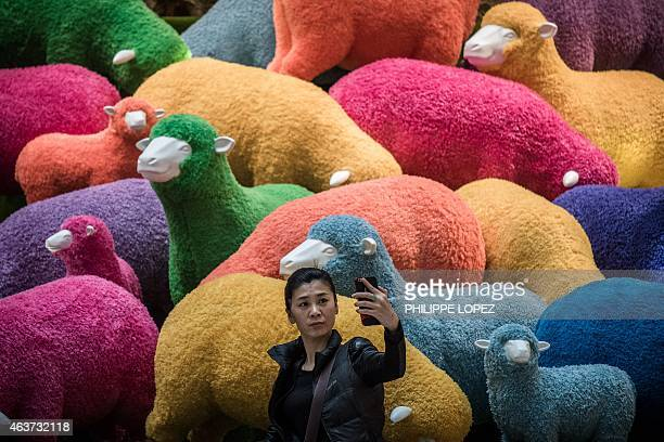 A woman takes a selfie in front of a multi coloured sheep installation displayed in a shopping mall for the Chinese New Year celebrations in Hong...