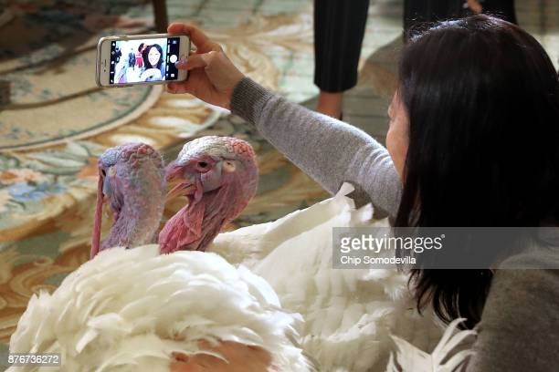 A woman takes a selfie with Drumstick and Wishbone the National Thanksgiving Turkey and its alternate 'wingman' during an event hosted by The...