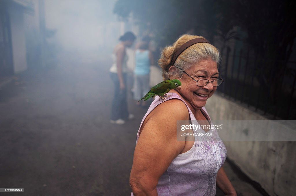 A woman takes her parrot away from where sanitation worker fumigate against the Aedes aegypti mosquito, vector of the dengue fever, a the 5 de Noviembre neighborhood in San Salvador, El Salvador on July 3, 2013. The government declared an orange alert for dengue fever in 18 districts of El Salvador. AFP PHOTO/ Jose CABEZAS
