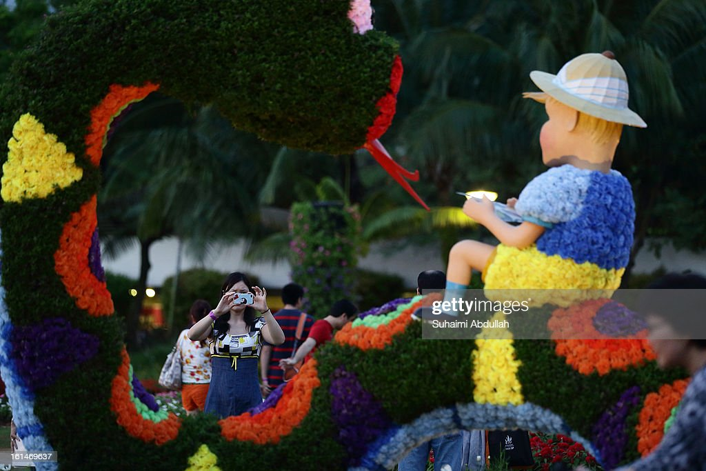 A woman takes photograph of a flower exhibit in the shape of a zodiac water snake at the Sentosa Flowers exhibition at Palawan Beach on February 11, 2013 in Singapore. Millions of spring flowers decorate the island in celebration of the Chinese New Year, the year of the Snake.
