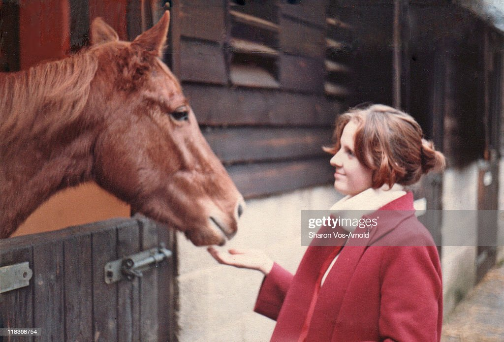 Woman talking to chestnut horse at stables : Stock Photo