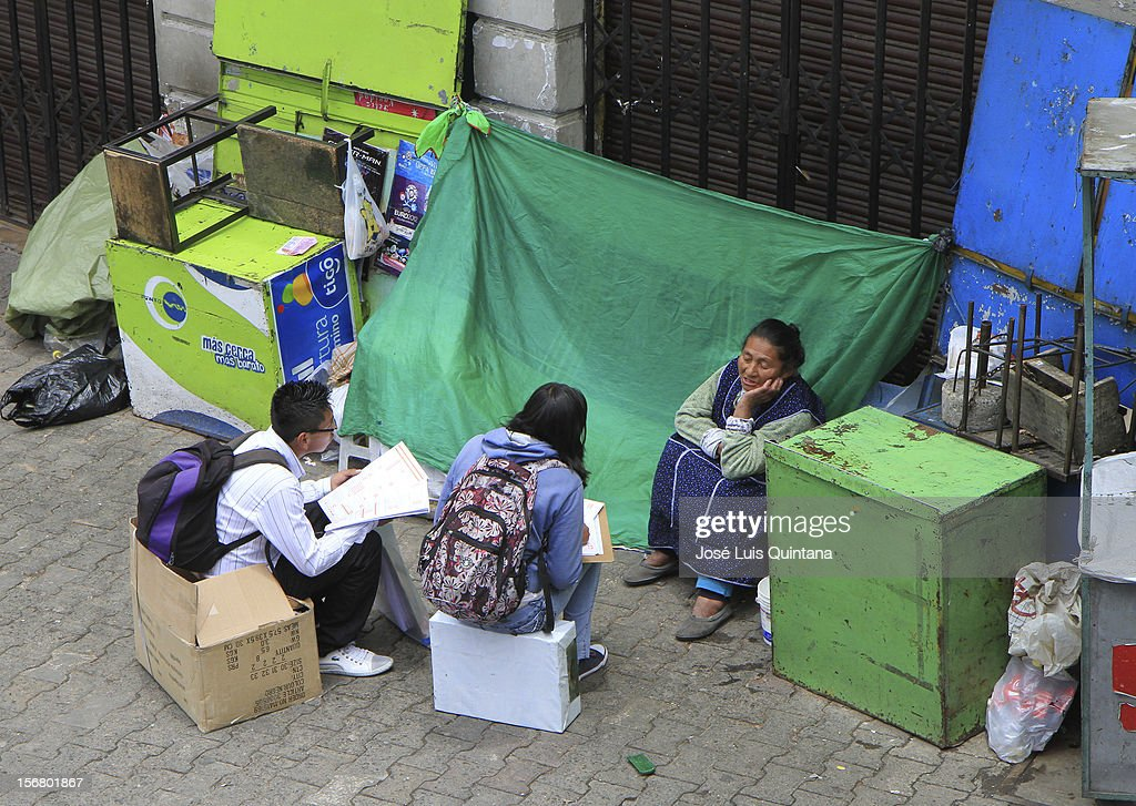 Woman talks to the enumerator during the bolivian national census on November 21, 2012 in La Paz, Bolivia.