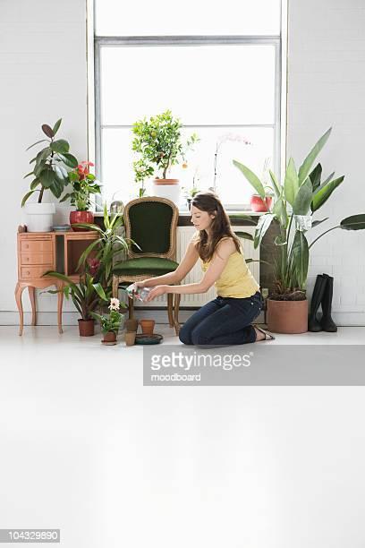 Femme répondant plantes en pot par la fenêtre