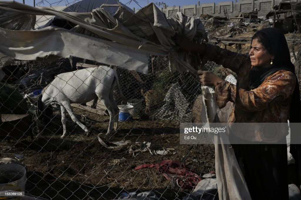 A woman tends to a fence in her makeshift home in Gaza's Forgotten Neighborhood on Sept. 6, 2012. A United Nations report issued last week questioned whether Gaza will be 'a liveable place' in 2020, citing shortages of food, clean water, electricity, jobs, hospital beds and classrooms amid an exploding population in what is already one of the most densely populated patches of Earth. The Forgotten Neighborhood, where about 40 families totalling 200 people have settled over the past four years near a municipal slaughterhouse in southern Gaza City, is an extreme case: the nicer homes are made of cinder blocks, or even stone slabs left from the security wall before Israel's disengagement, while others live in tents of rusty zinc sheets with branches for roofs.