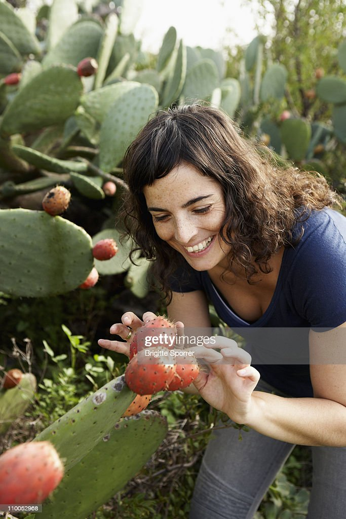 Woman touching cactus : Stock Photo