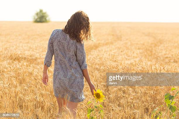 Woman touching sun flower on a field of wheat