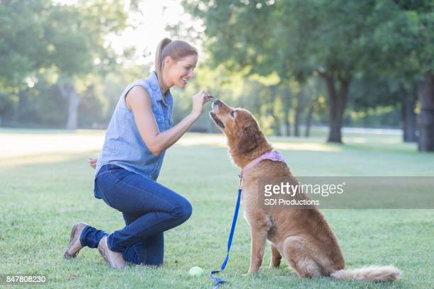 Woman trains her dog in the park