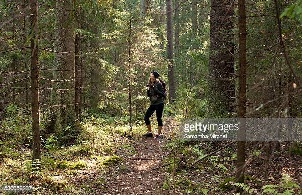 Woman trekking through forest, Helsinki, Finland