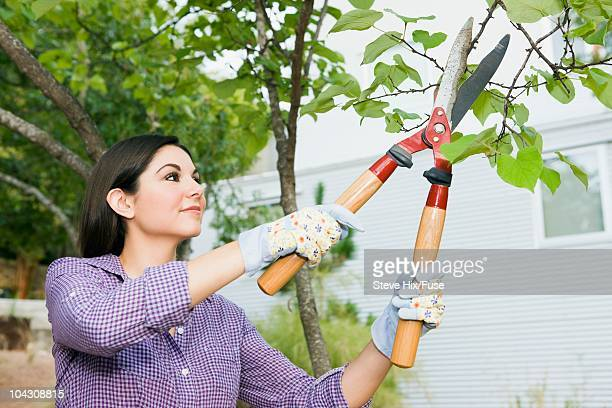 Woman trimming tree branches