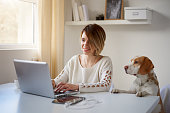 Woman using laptop for work at home office. Dog next to her