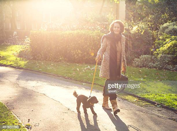 Woman walking a dog in park in sunny autumn afternoon