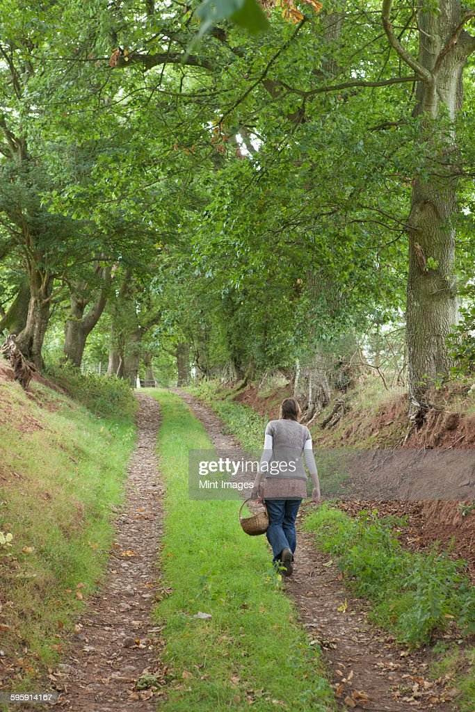 A woman walking along a country lane, a forager carrying a basket.